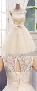 vestidos para damas de 15 anos (5)