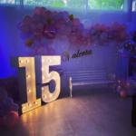 Fotos de tendencias en decoracion de fiestas de 15 años